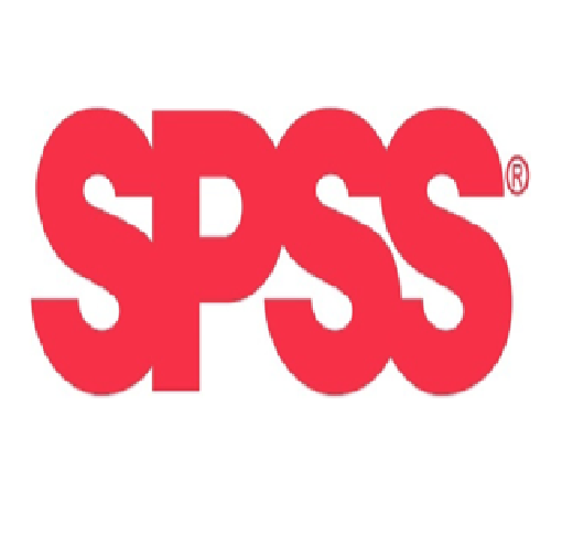 SPSS-Auswertung